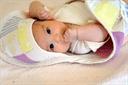卵胞期(低温期)