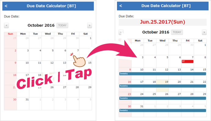 Due Date Calculator & Pregnancy Calendar